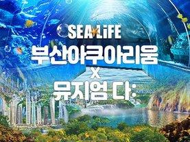 [부산 해운대] 부산아쿠아리움+뮤지엄 다 수퍼네이처