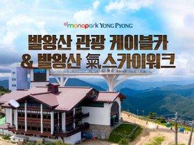 [강원 평창] 용평리조트 발왕산 케이블카&스카이워크
